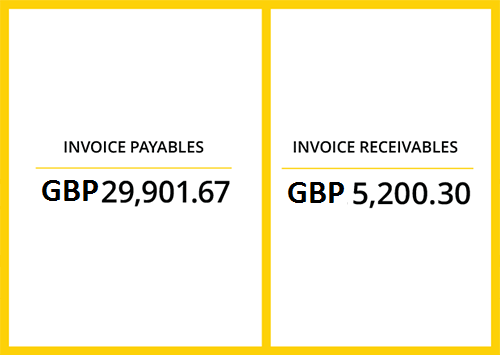 Invoice-Tracking and Reporting: Track all foreign currency holding balances and activity statements at a glance