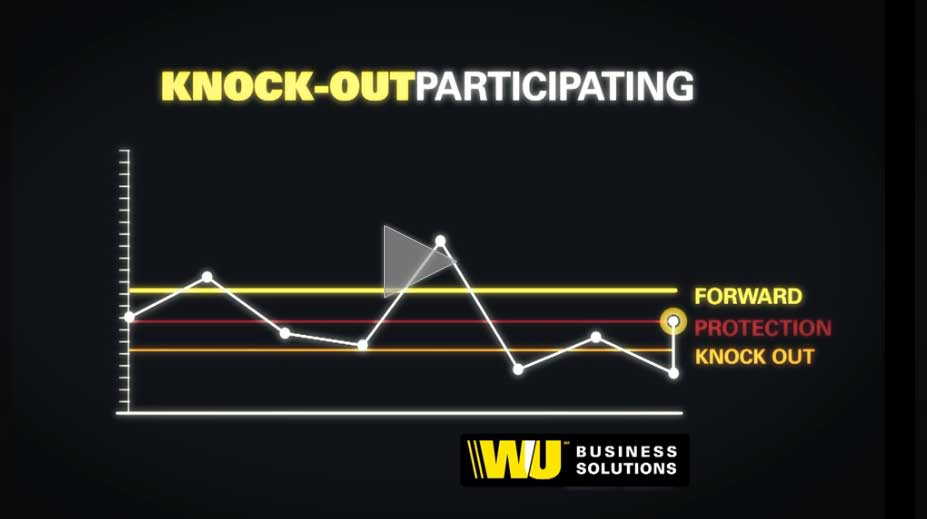 Video: Knock-out Participating